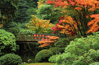 Photograph - Moon Bridge In Autumn, Portland by Danita Delimont