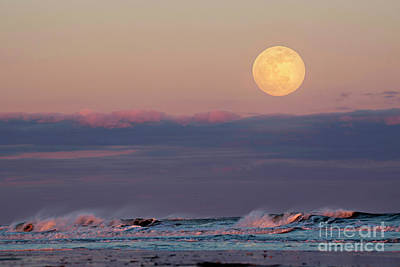 Photograph - Moon Daze by DJA Images