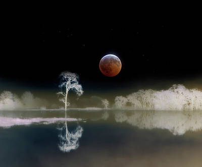 Photograph - Moon From Total Lunar Eclipse by Diane Miller