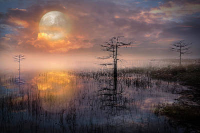 Photograph - Moon Rise In The Glades by Debra and Dave Vanderlaan
