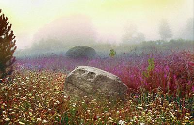Digital Art - Moon Rock by Yuri Lev