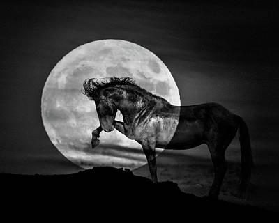 Photograph - Moonlight by Mary Hone