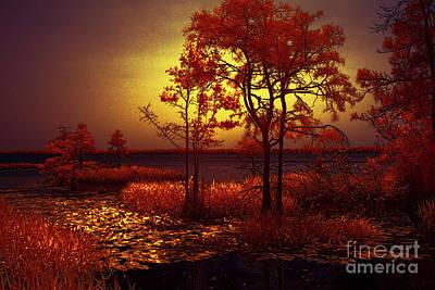 Photograph - Moonlit Night by Dan Carmichael