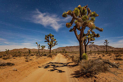 Photograph - Moonlit Queen Valley Road by Al Hann