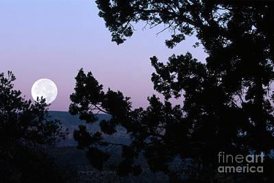 Photograph - Moonrise In Sedona by Sandra Bronstein