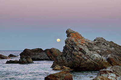 Photograph - Moonrise Over Burgess Beach by Nicholas Blackwell