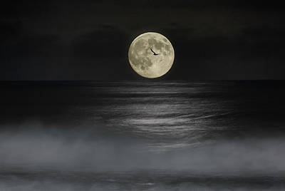 Photograph - Moonset by PhotoWorks By Don Hoekwater