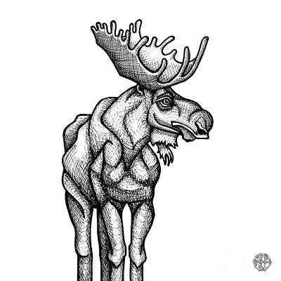 Drawing - Moose by Amy E Fraser
