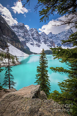 Photograph - Moraine Lake Viewpoint by Inge Johnsson
