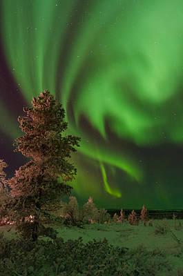 Photograph - More Northern Lights by Kind Regards, Huggy's Pics