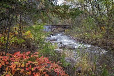 Photograph - More Seven Bridges Road by Susan Rissi Tregoning