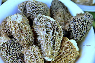 Photograph - Morel Mushrooms by Kae Cheatham