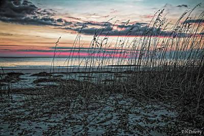 Morning Among The Sea Oats Original