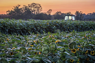 Photograph - Morning Fields by Kristopher Schoenleber