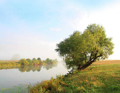 Photograph - Morning Lake Landscape by Kokhanchikov