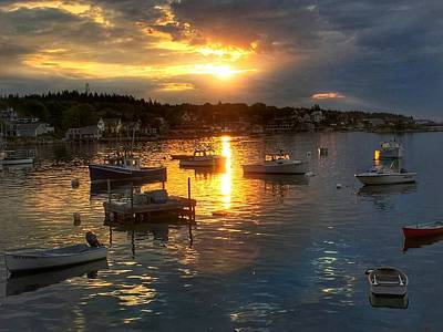 Photograph - Morning Light In Stonington Maine by Anne Sands