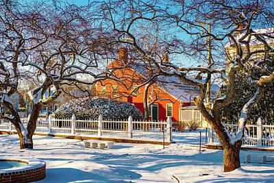 Photograph - Morning Light, Winter Garden. by Jeff Sinon