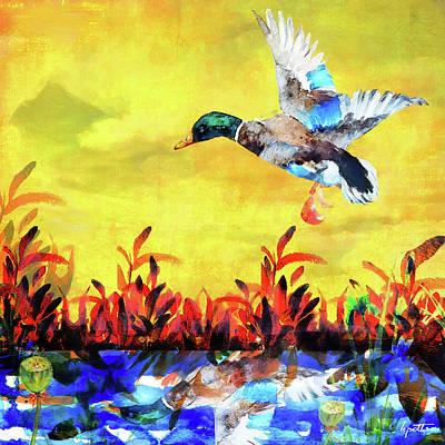 Painting - Morning Mallard by Kimberly Potts