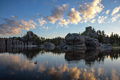 Photograph - Morning Swim, Sylvan Lake by Denise Bush
