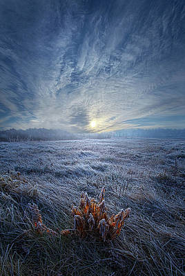 Art Print featuring the photograph Morning Time Blues by Phil Koch