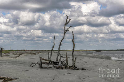 Photograph - Morris Island Solitude by Dale Powell