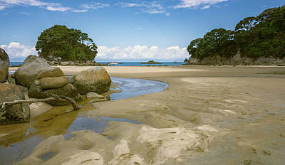 Photograph - Mosquito Bay Abel Tasman National Park New Zealand by Joan Carroll