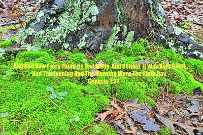 Photograph - Moss And Leaves Ground Cover Genesis 1 31 by Lisa Wooten