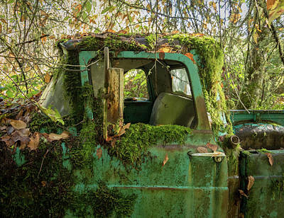 Photograph - Mossy Truck by Jean Noren