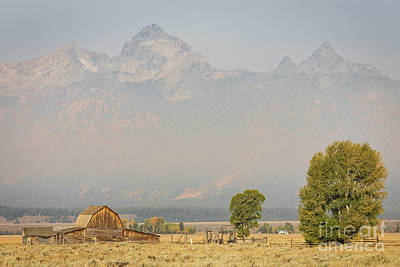 Photograph - Moulton Barn On Mormon Row by Doug Sturgess