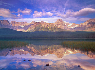 Photograph - Mount Chephren Reflected In Waterfowl by Tim Fitzharris/ Minden Pictures