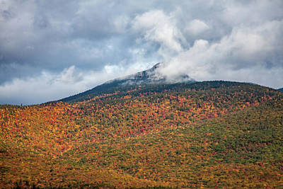 Photograph - Mount Chocorua Carpet Of Fall Colors by Jeff Folger