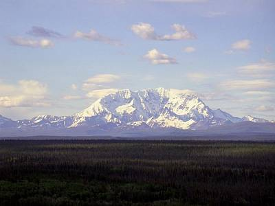 Photograph - Mount Drum Alaska by Mark Duehmig