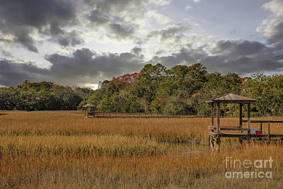 Photograph - Mount Pleasant Winter Salt Marsh by Dale Powell