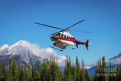 Photograph - Mount Shark Helicopter by Inge Johnsson