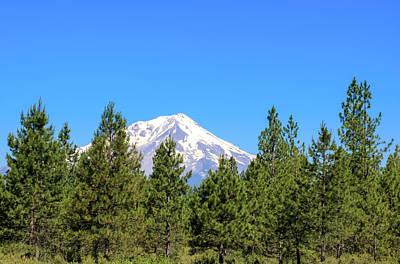 Photograph - Mount Shasta, California by Dawn Richards
