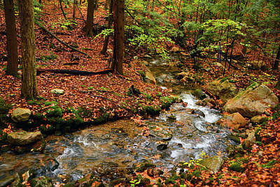 Photograph - Mountain Creek In Ma by Raymond Salani III