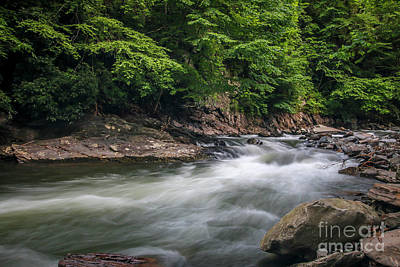 Photograph - Mountain Stream In Summer #3 by Tom Claud
