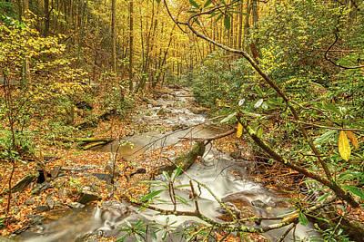 Photograph - Mountain Stream by Meta Gatschenberger