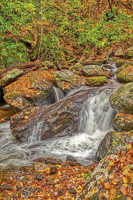 Photograph - Mountain Stream Rock by Meta Gatschenberger
