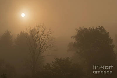 Photograph - Mountain Sunrise Misty Morning by Thomas R Fletcher