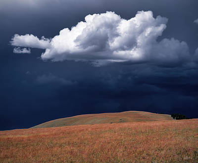 Photograph - Mountain Thundershower by Leland D Howard