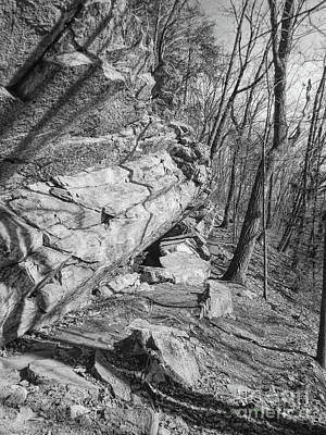 Photograph - Mountain Trail by Phil Perkins