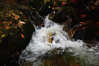 Photograph - Mountain Water by Raymond Salani III