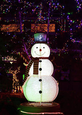 Photograph - Mr. Snowman by Susan Rissi Tregoning