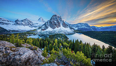 Photograph - Mt Assiniboine Panorama by Inge Johnsson
