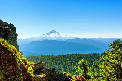 Photograph - Mt Hood Seen From Beyond by Dee Browning