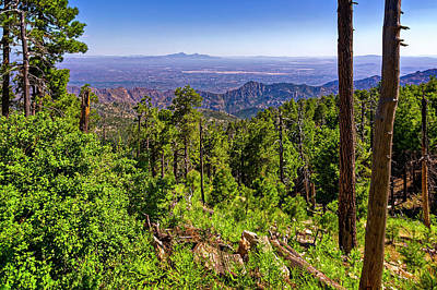 Mark Myhaver Rights Managed Images - Mt Lemmon Vista h1910 Royalty-Free Image by Mark Myhaver
