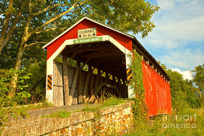 Photograph - Mt. Pleasant Covered Bridge Lush Green Landscape by Adam Jewell