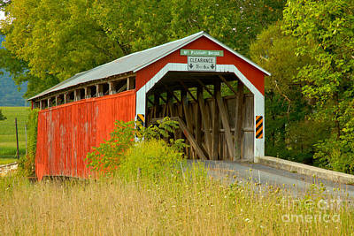Photograph - Mt. Pleasant Covered Bridge Through The Grass by Adam Jewell