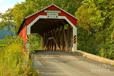 Photograph - Mt. Pleasant Covered Bridge Under The Trees by Adam Jewell